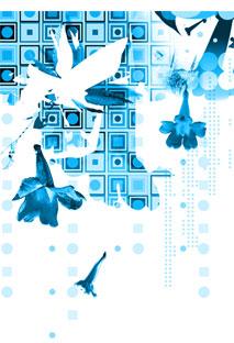 design5.jpg